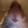 Rowfag's avatar