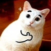 HowlerTheDog's avatar