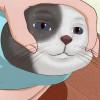 Hephaestus's avatar